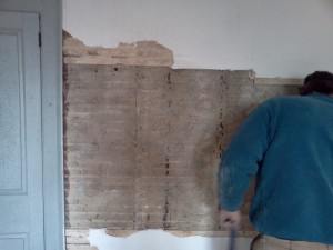 Dan, removing plaster in the blue parlor